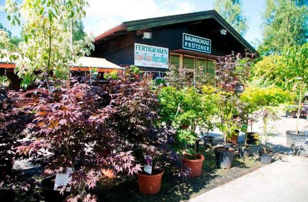 Kostenlose kleinanzeigenmarkt alle for Gartengestaltung kinderfreundlich